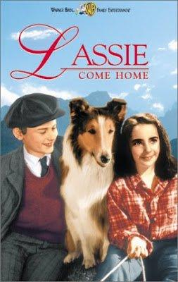 Lassie Come Home κδβκ